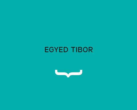<ab>Egyed Tibor</ab>grafikatanár