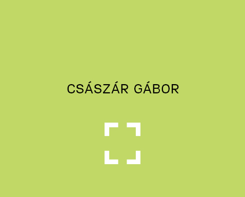 <ab>Császár Gábor</ab>Volt kolléga<br>Rajztanár, Művészeti <br> Igazgatóhelyettes