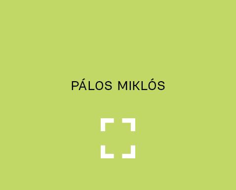 <ab>Pálos Miklós</ab>rajztanár<br>rajzi munkaközösség<br>vezető