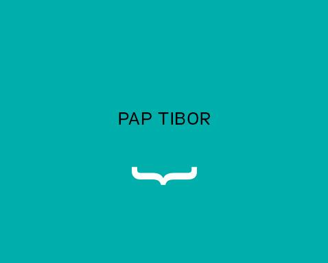 <ab>Pap Tibor</ab>volt kolléga</br>tiszteletbeli grafikatanár