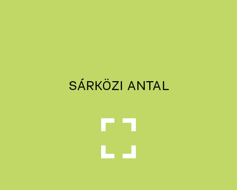 <ab>Sárközi Antal</ab>rajztanár