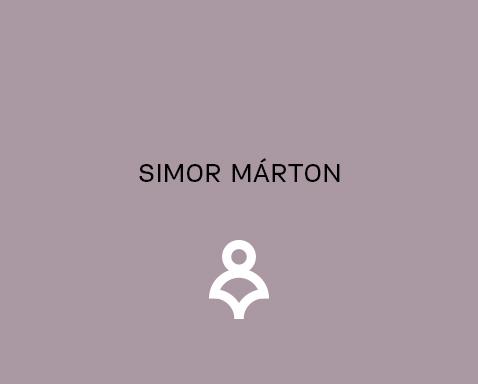 <ab>Simor Márton </ab>szobrásztanár,<br>gyakorlati oktatásvezető