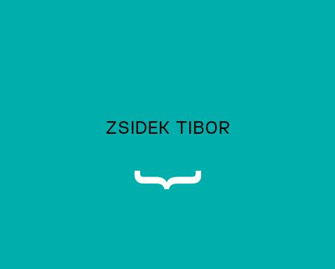 <ab>Zsidek Tibor</ab>animációtanár